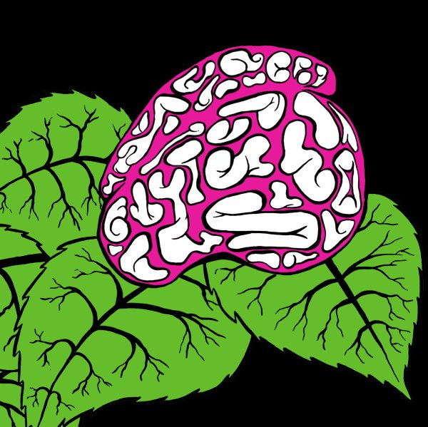 Digital drawing of brain resting on top of a grouping of leaves.